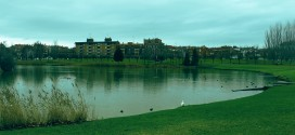 El consistorio procede a la desratización del entorno del lago