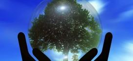 La AIMRDy el consistorio proponen un debate para hablar del cambio climático