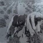 Leonor Moral y Eva Martín