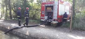 Extinguido un incendio junto a la acequia