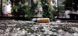 El programa Nexus volverá a incidir en la prevención sobre el consumo de drogas