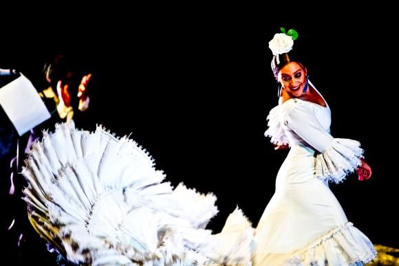 Flamenco tratado 3