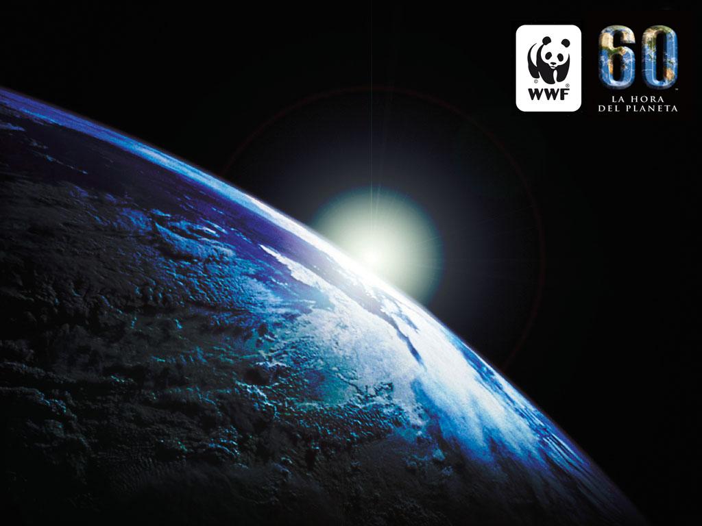 Laguna, primera localidad apuntada a La hora del Planeta 2014
