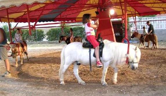 Laguna declarada libre de circos y carruseles con animales
