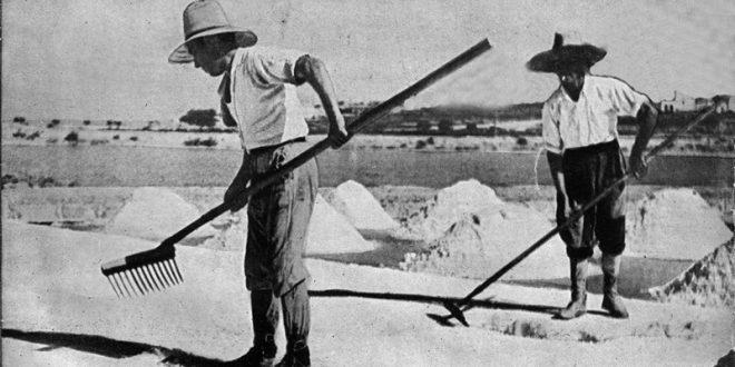 La sal de compás, un recurso explotado a espaldas de los laguneros