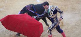 Darío Domínguez roza la  puerta grande en la segunda novillada de la feria