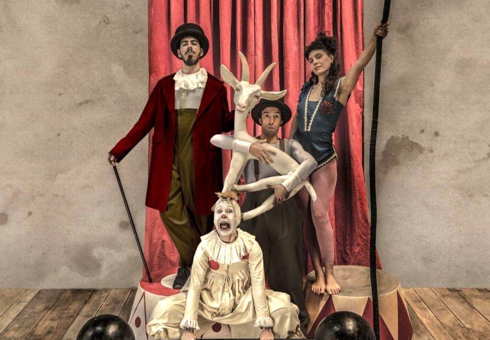 La música clásica y el circo invaden este fin de semana la Casa de las Artes